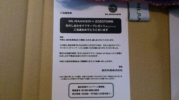 DSC_3638.JPG